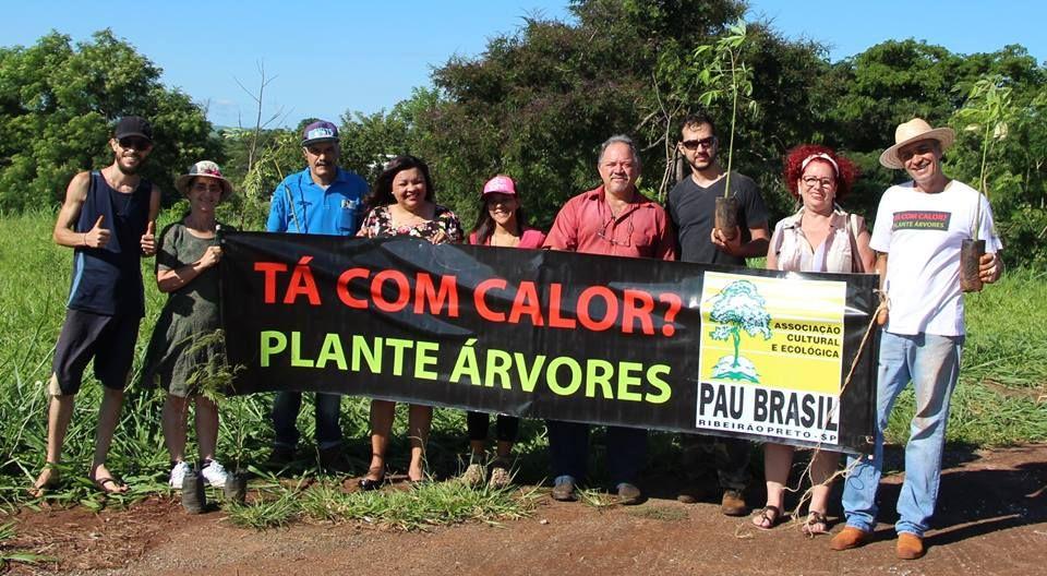 """Revide, Conheça o projeto """"Tá com calor? Plante árvores"""", reflorestamento, meio ambiente, plantio, árvores, mutirão, Associação Pau Brasil, calor"""