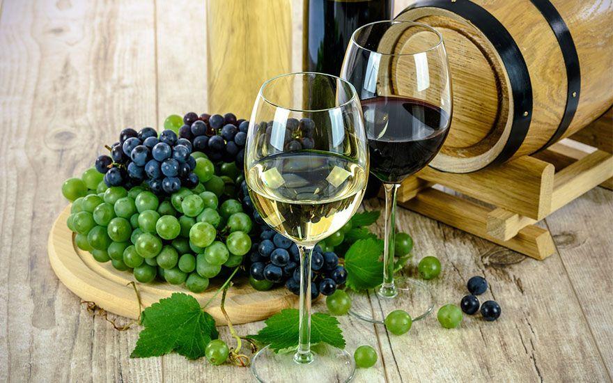 Revide, Ribeirão Preto recebe evento de degustação de vinho, vinhos, Chile, Ribeirão Preto